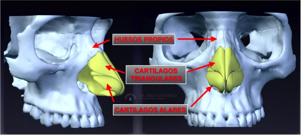 rinoplastia-cirujano-plastico-madrid-1